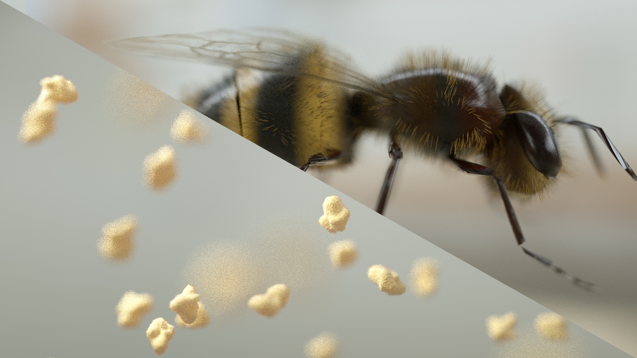 popcorn_bee